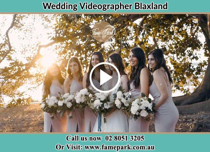 Bride and her bride's maids Blaxland NSW 2774